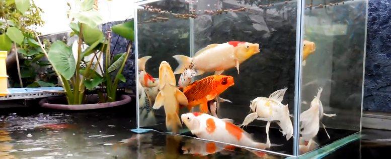 Der Fisch Turm