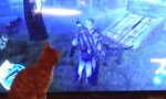 Katze vs Assassins Creed